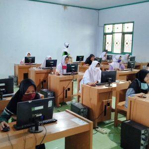 Seleksi Club Bahasa : Pembenihan Bibit Unggul