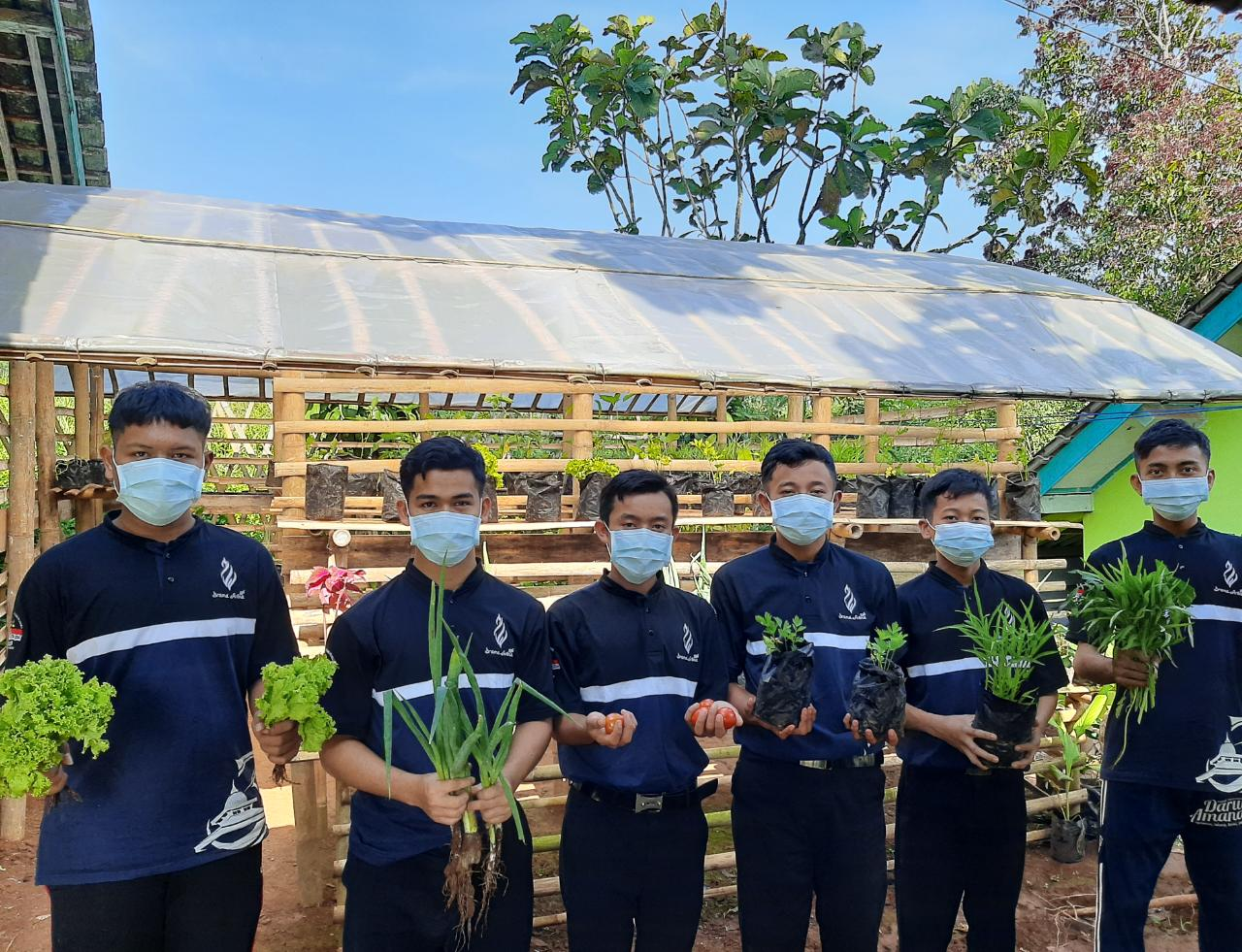 Wujud Kelestarian Hidup dan Kemandirian Pangan, Santri Pondok Pesantren Darul Amanah Panen Perdana Sayuran